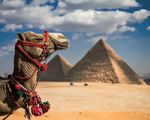 Egypt med Tone