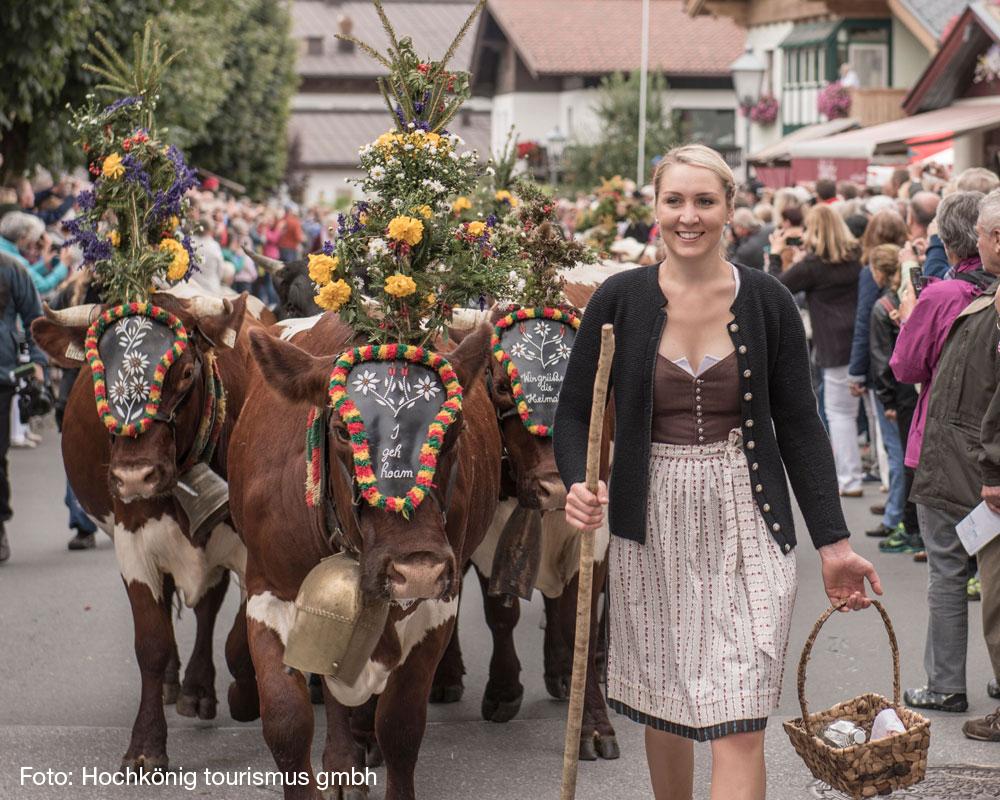 Almabtrieb i Maria Alm, et meget tradisjonelt og folklorist arrangement (Væravhengig) (F, M)