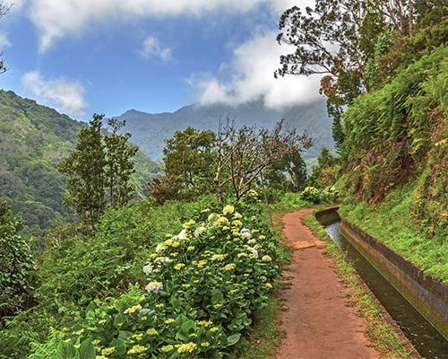 Singeltur - Levadavandring Madeira