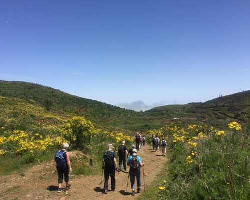 Tenerife - vandringer og kultur